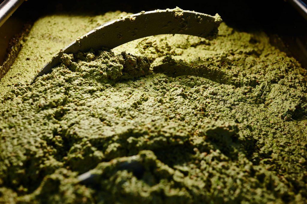gramolazione della pasta di oliva